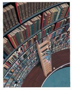 bibliotheque-volubilis